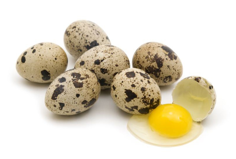 перепелиные яйца - ферма Тюниных